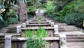 Тест: Что вы знаете о Никитском ботаническом саде?