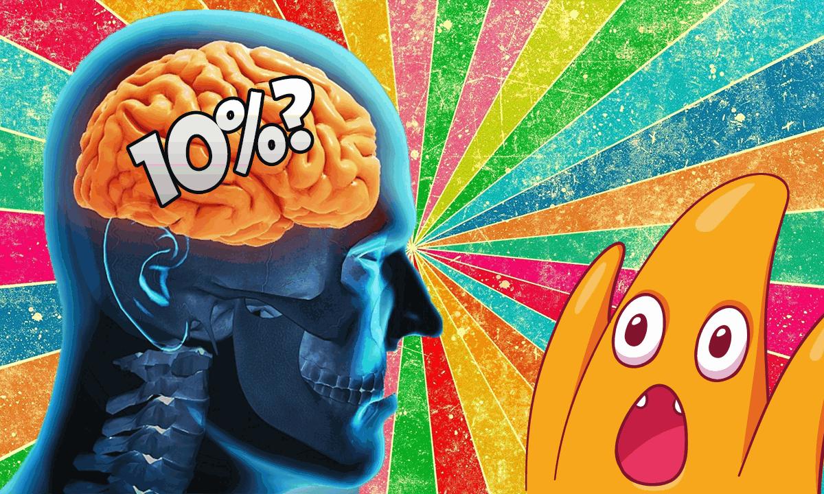 Тест: Насколько вы используете мозг?